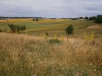 terrain à vendre à RIBERAC, Dordogne, Aquitaine, avec Leggett Immobilier