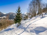 terrain à vendre à SAINT GERVAIS LES BAINS, Haute_Savoie, Rhone_Alpes, avec Leggett Immobilier