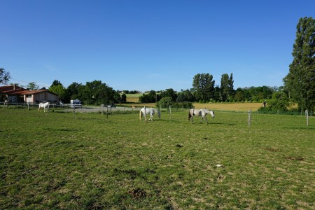 French property, houses and homes for sale in LOUBENS LAURAGAIS Haute_Garonne Midi_Pyrenees