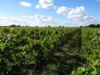 Maison à vendre à Bordeaux, Dordogne, Aquitaine, avec Leggett Immobilier