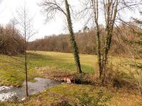 Maison à vendre à nanthiat, Dordogne, Aquitaine, avec Leggett Immobilier