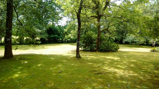 French property, houses and homes for sale in MONT DE MARSAN Landes Aquitaine