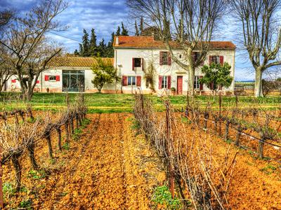 French property, houses and homes for sale in LE CAILAR Gard Languedoc_Roussillon