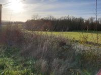 Terrain à vendre à TOURTOIRAC en Dordogne - photo 7