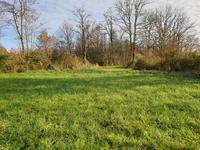 Terrain à vendre à TOURTOIRAC en Dordogne - photo 4