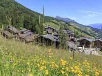 French property for sale in VALMOREL, Savoie - €60,000 - photo 11