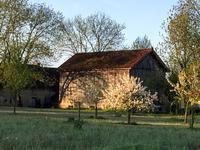 Grange à vendre à TREMOLAT en Dordogne - photo 5