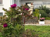 French property for sale in VILLENEUVE SUR LOT, Lot et Garonne - €583,000 - photo 2