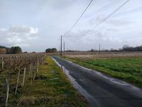 French property for sale in PAUILLAC, Gironde - €999,900 - photo 4