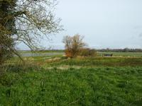 French property for sale in CRETTEVILLE, Manche - €66,000 - photo 3