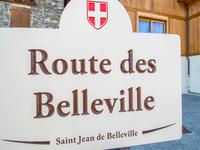French property, houses and homes for sale inSaint Jean de BellevilleSavoie French_Alps