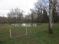 French property for sale in ADRIERS, Vienne - €36,000 - photo 9