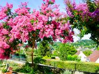 French property for sale in SARLAT LA CANEDA, Dordogne - €248,000 - photo 10