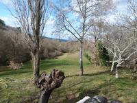 French property for sale in ST ANDRE D OLERARGUES, Gard - €695,030 - photo 3