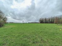 French property for sale in AUSSAC, Charente - €35,900 - photo 5