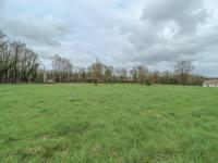 French property for sale in AUSSAC, Charente - €35,900 - photo 4