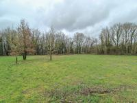 French property for sale in AUSSAC VADALLE, Charente - €35,500 - photo 6