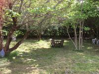 French property for sale in MASQUIERES, Lot et Garonne - €775,000 - photo 10