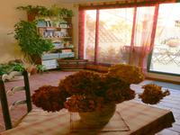 French property for sale in ILLE SUR TET, Pyrenees Orientales - €160,500 - photo 5