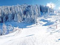 chalet à vendre à MERIBEL, Savoie, Rhone_Alpes, avec Leggett Immobilier