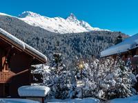 Terrain à vendre à MERIBEL HAMLETS en Savoie - photo 9