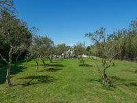 French property for sale in ST REMY DE PROVENCE, Bouches du Rhone - €487,600 - photo 10