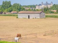 French property for sale in VERTEUIL SUR CHARENTE, Charente - €1,085,000 - photo 11