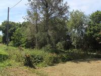 French property for sale in MAEL CARHAIX, Cotes d Armor - €56,600 - photo 9