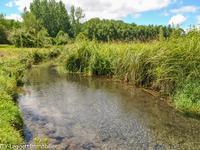 French property for sale in TREMOLAT, Dordogne - €288,900 - photo 8