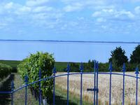 French property for sale in BARZAN, Charente Maritime - €267,500 - photo 2