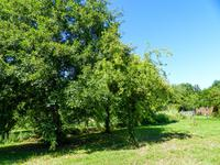 French property for sale in LE VIGAN, Lot - €36,600 - photo 9