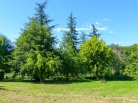 French property for sale in LE VIGAN, Lot - €36,600 - photo 5