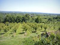 French property for sale in PINEL HAUTERIVE, Lot et Garonne - €344,500 - photo 3