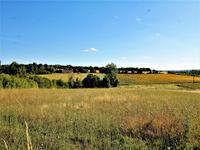 Terrain à vendre à SALLES DE VILLEFAGNAN en Charente - photo 1