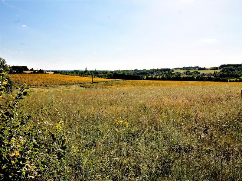Terrain à vendre à SALLES DE VILLEFAGNAN(16700) - Charente