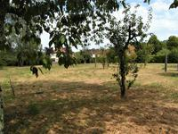French property for sale in , Haute Vienne - €13,000 - photo 9