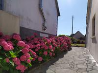 French property for sale in FREHEL, Cotes d Armor - €249,500 - photo 6