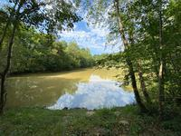 French property for sale in ST BARTHELEMY DE BELLEGARDE, Dordogne - €590,000 - photo 3