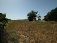 French property for sale in PIOUSSAY, Deux Sevres - €104,500 - photo 10