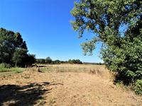 French property for sale in VIDEIX, Haute Vienne - €75,900 - photo 3