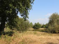 French property for sale in PERSAC, Vienne - €104,500 - photo 9