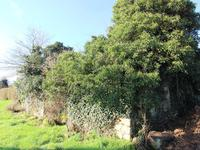 French property for sale in CALLAC, Cotes d Armor - €29,600 - photo 7