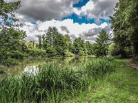 Lacs à vendre à ASNOIS en Vienne - photo 2