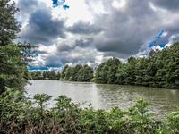 Lacs à vendre à ASNOIS en Vienne - photo 1