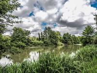 Lacs à vendre à ASNOIS en Vienne - photo 3