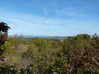 French property for sale in STE VALIERE, Aude - €294,250 - photo 10