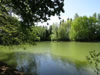 lacs à vendre à ORGERES, Ille_et_Vilaine, Bretagne, avec Leggett Immobilier