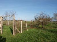 French property for sale in LIZANT, Vienne - €55,600 - photo 3