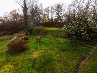 French property for sale in ARLEUF, Nievre - €77,000 - photo 9