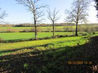 French property for sale in MADRE, Mayenne - €39,600 - photo 2